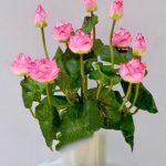 Gợi ý những mẫu hoa giả cho phòng khách