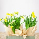 Gợi ý cách cắm hoa để bàn làm việc đơn giản dễ thực hiện