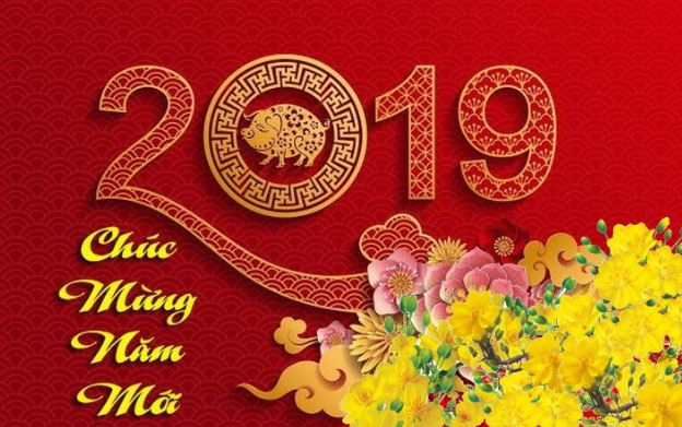 cay-phong-thuy-theo-tuoi-2019