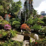 55+ ý tưởng sắp xếp cảnh quan sân vườn đẹp và chuẩn