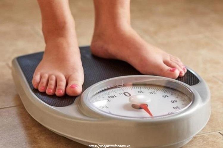 Hỗ trợ giảm cân với tư thế ngồi bết đúng chuẩn