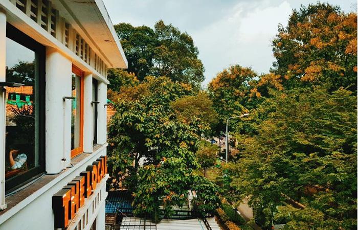 View của quán với không gian xanh ngát