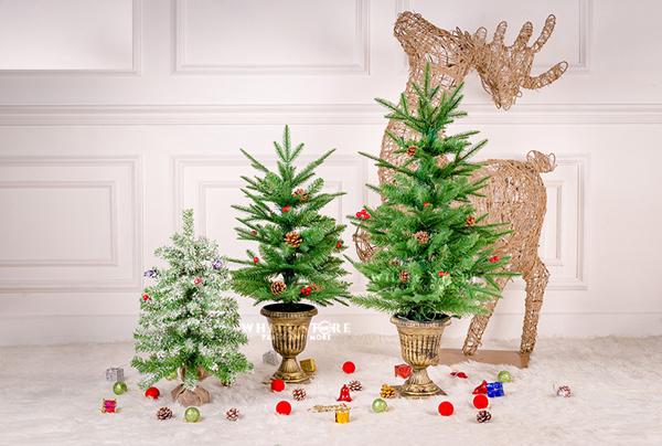 Trang trí Noel luôn là chủ đề được quan tâm trong những tháng cuối năm
