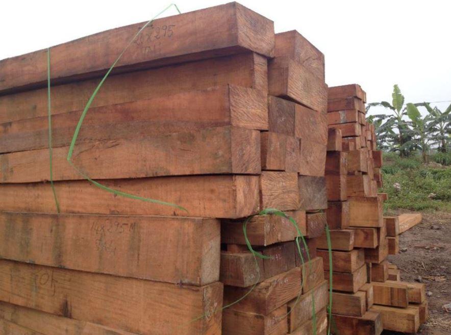cách nhận biết gỗ lim qua trọng lượng