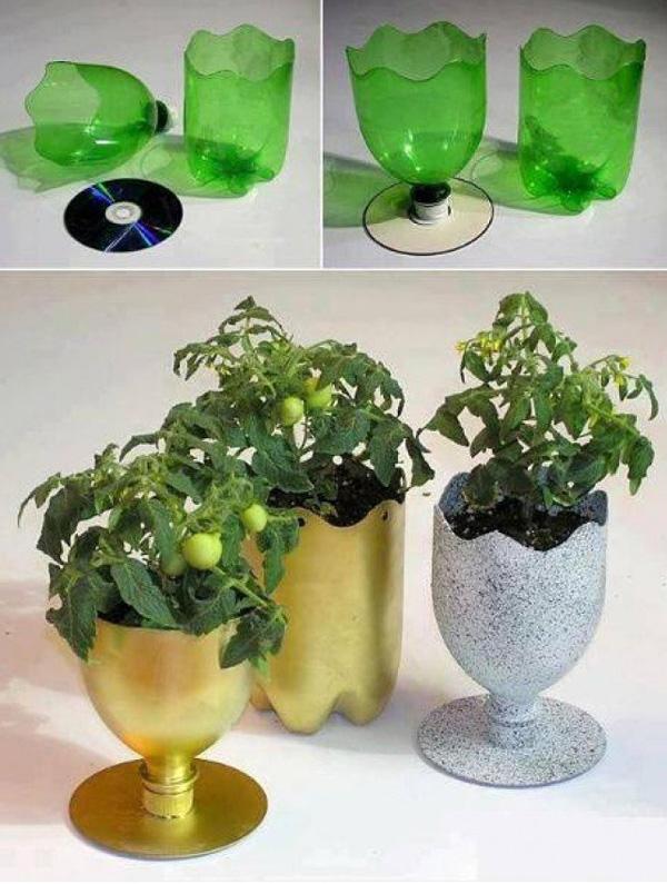 Chậu câu cảnh mini đẹp mắt làm từ chai nhựa tái chế