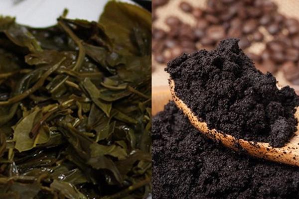 Bã trà, cà phê có khả năng đánh banh mùi hôi nhanh chóng