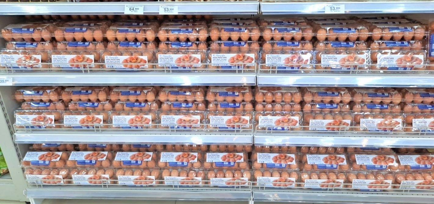 trứng gà hòa phát