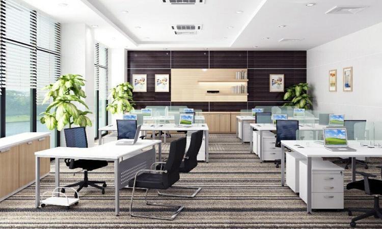 Mẫu trang trí nội thất bàn làm việc giám đốc kết hợp không gian làm việc chung